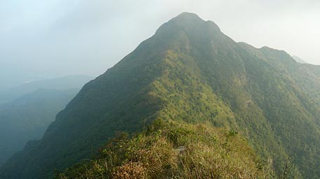Along the 'saddle' extending to the peak of Ma On Shan